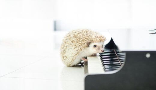 ピアノ発表会2020