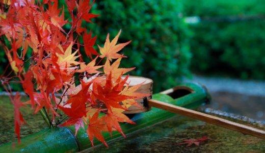 秋のキャンペーンお知らせ